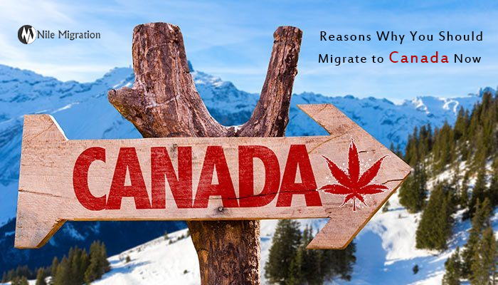 Reasons why you should migrate to Canada now copy